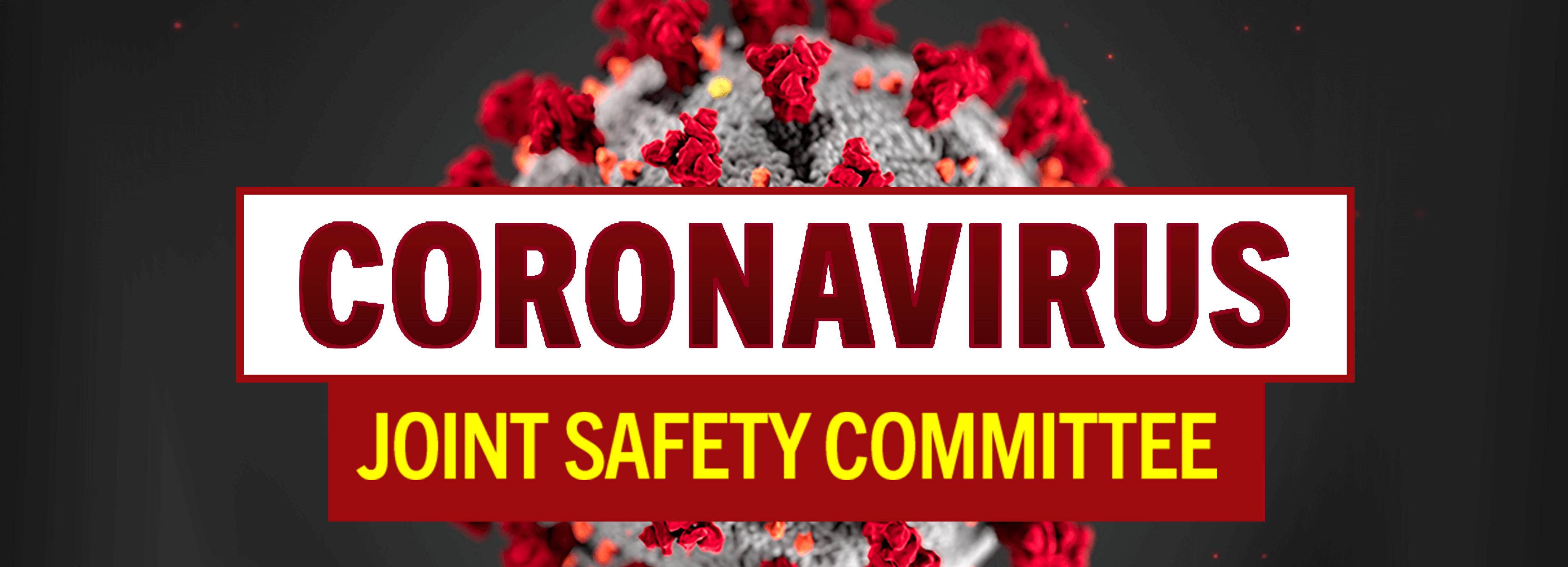 JOINT SAFETY COMMITTEE